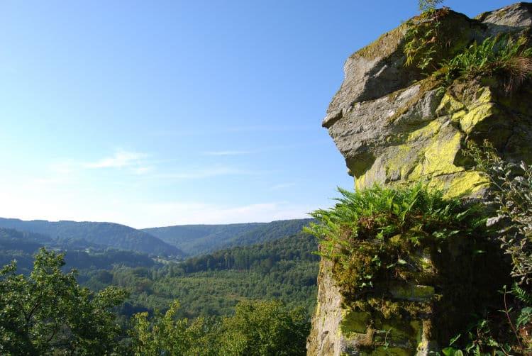 2009 - Bohan - printemps - réserve naturelle - cheminée (JM Verday Ardenne namuroise) (27)