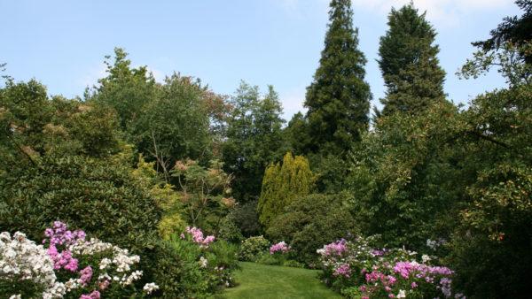 Arboretum in Monceau-sur-Sambre