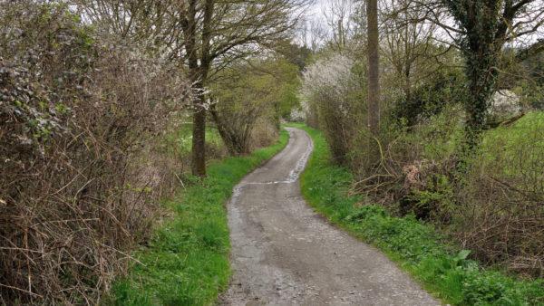 Lange wandelingen