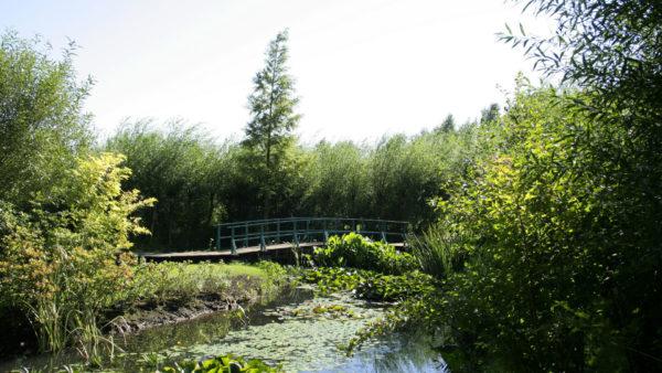 Meer van Bambois