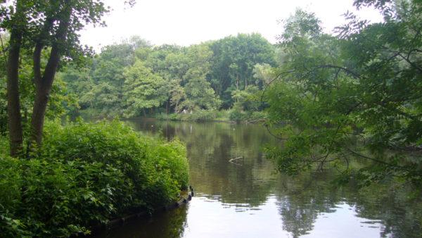 Natuurreservaat van de Rouge Poncé