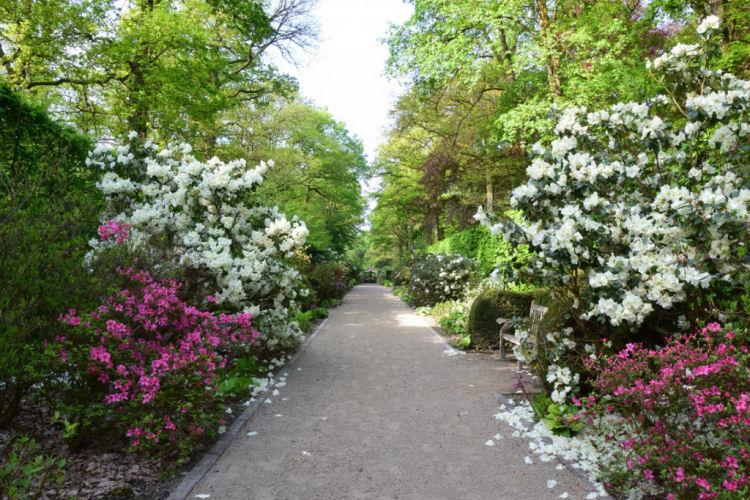 De tuinen van Chevetogne