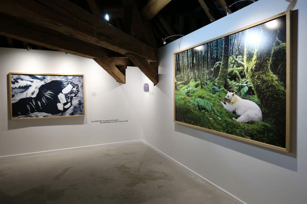 national geographic expositie Abdij van Stavelot