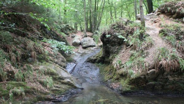 ninglinspo wandeling water rotsen