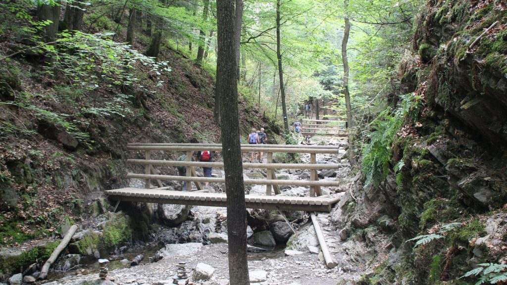 ninglinspo wandeling houten bruggen