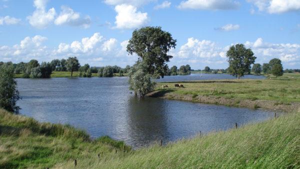 Fietsvakantie door Nederland, België en Frankrijk - Maasroute