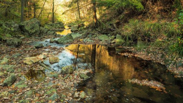 Hoëgne - een mooie wandeling in de Ardennen