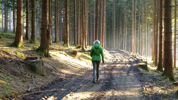 Nordic Walking in de Ardennen