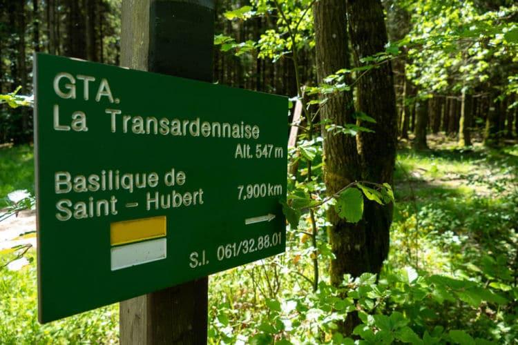 Saint Hubert transardennaise