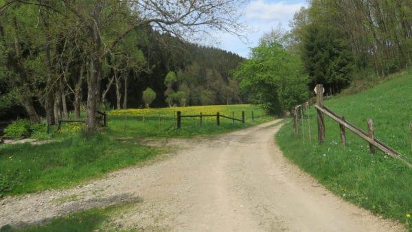 Wandeling over de Forellenweg