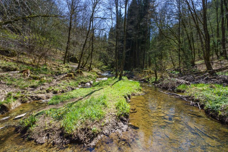 Martin-Moulin rivier