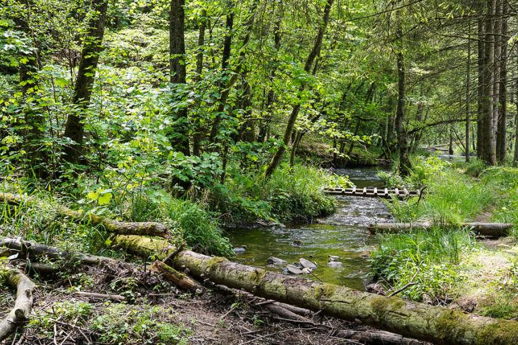 Wandeling in de Feeënvallei