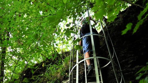 Laddertjeswandeling in Rochehaut 5.5 km