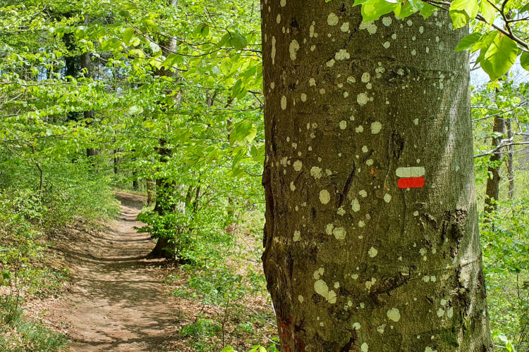 Rood-witte markering van het GR pad