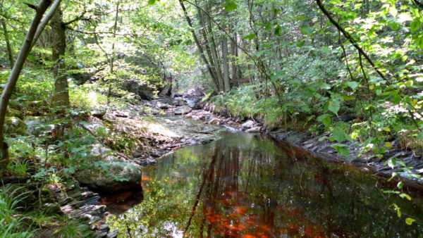 Wandeling langs de Sawe, een schilderachtige rivier