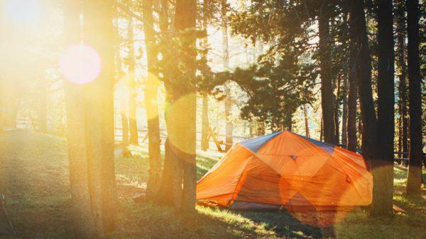 Campings in de Ardennen