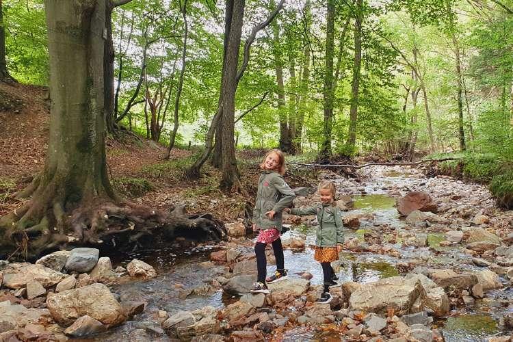 Spelen in de rivier de Sawe