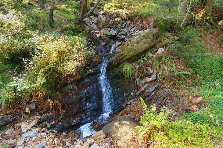 Mooie waterval aan de rand van het bos